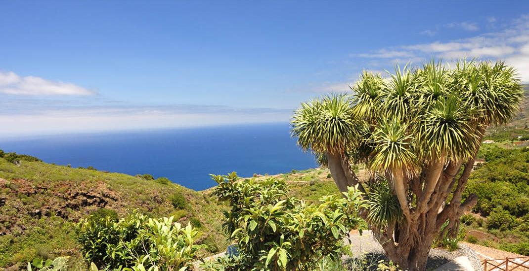 La_Palma_Blick-auf-das-Meer