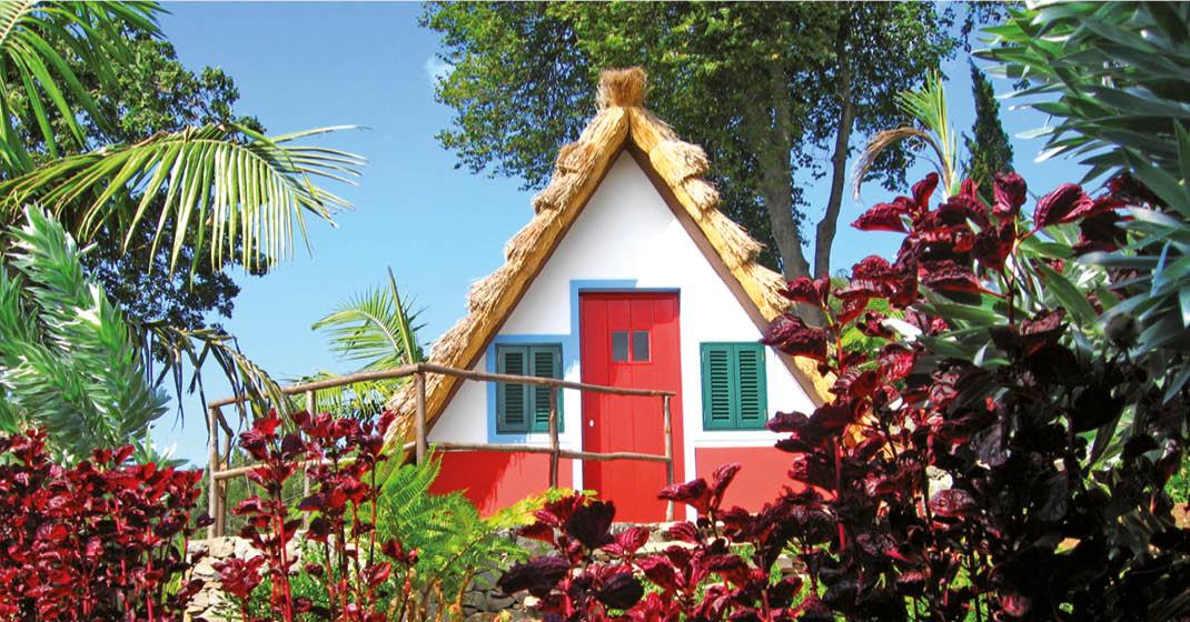 Madeira_Wandern_Haus_Pflanzen