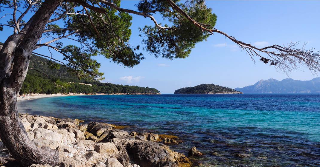 Mallorca Mandelblüte Wandern_Küste