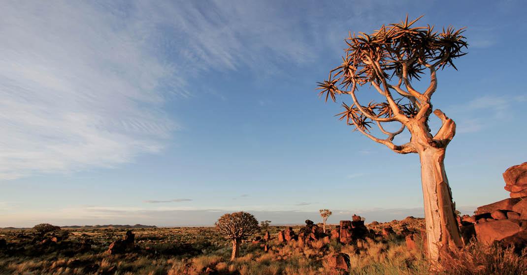 Südafrika_Landschaft
