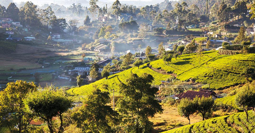 Sri Lanka_Hochland