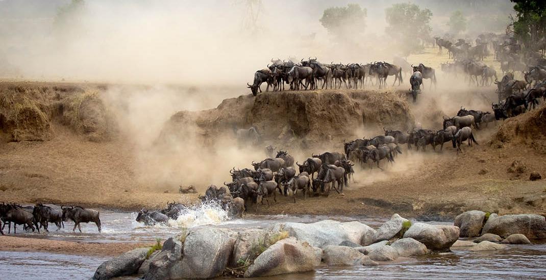 Tansania_Migration_4