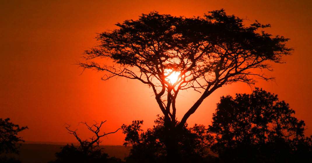 Tansania_Sonnenuntergang