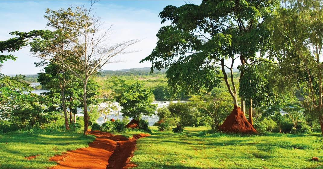 Uganda_Landschaft_Nil