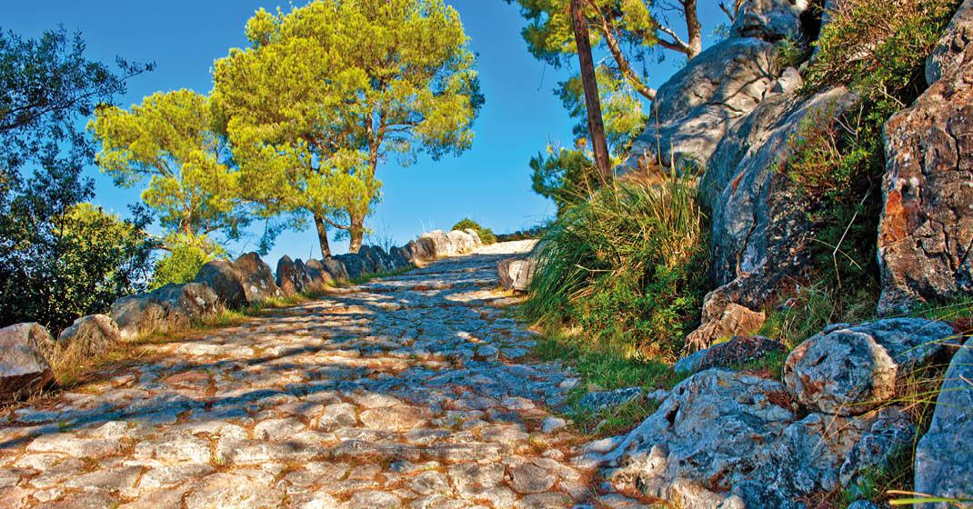 Aktiv_Genuss_Mallorca2