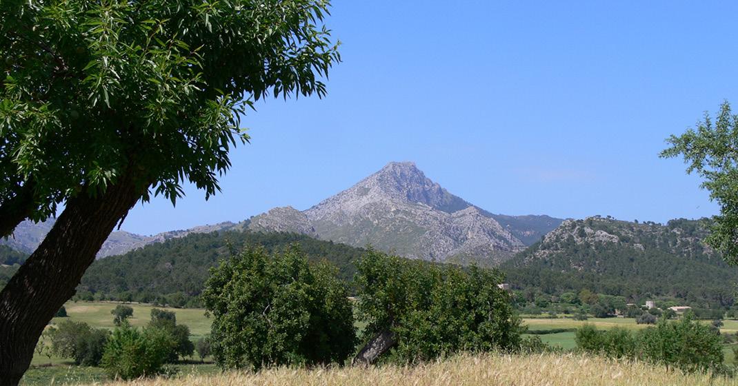FL8544 – Exklusive Wandertour Mallorca_7