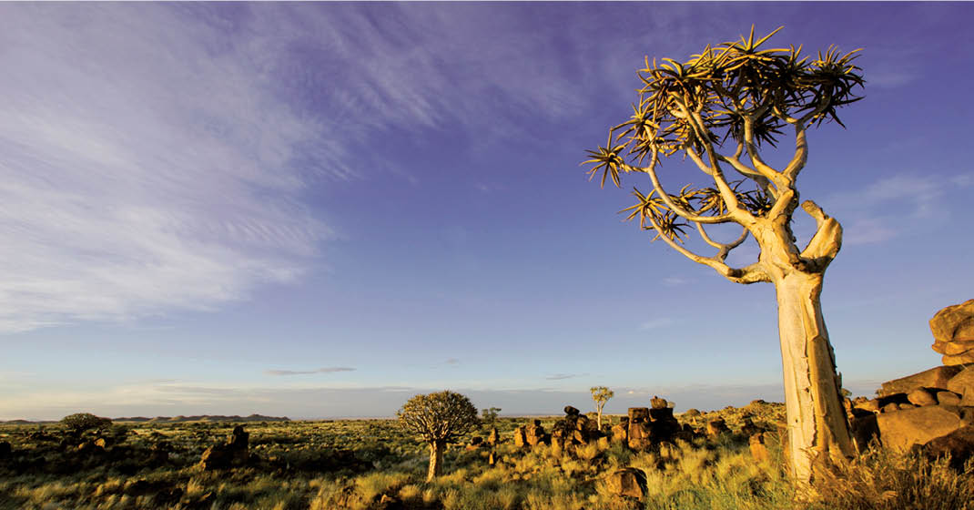FL8589_Namibia_3