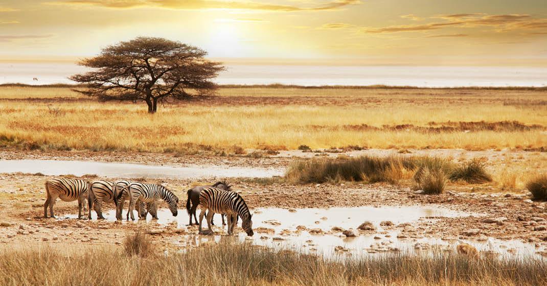 FL8589_Namibia_4