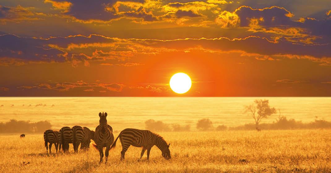 FL8589_Namibia_6