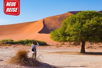 FL8589 Namibia Beitragsbild - NAMIBIA - ein zeitloses Abenteuer
