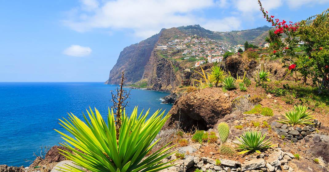 Madeira_BU8206_Pflanzenwelt