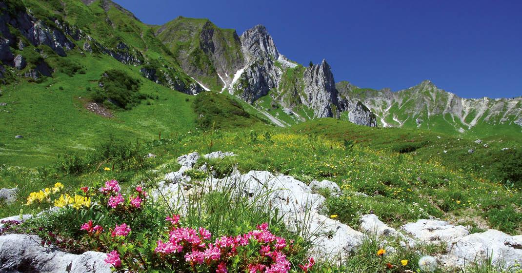 BU8605_Alpenüberquerung2