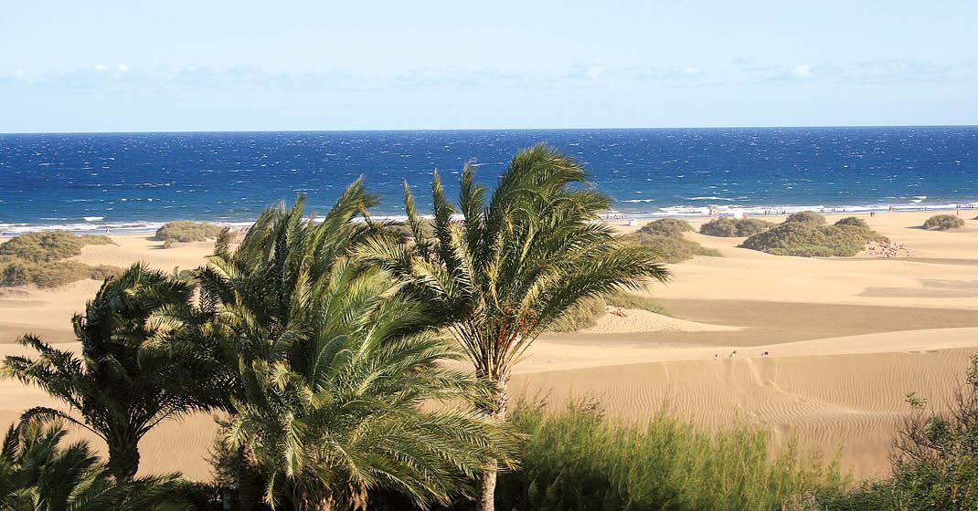 FL8707_RIU Palmeras_Gran Canaria_2