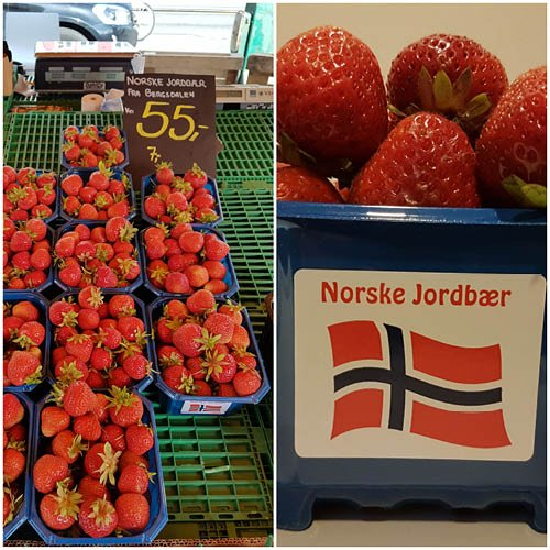 MS Nordnorge_7