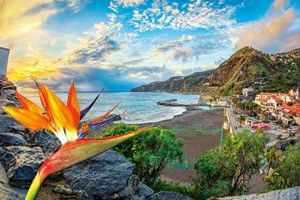 Madeira_Pestana Ocean Bay Resort