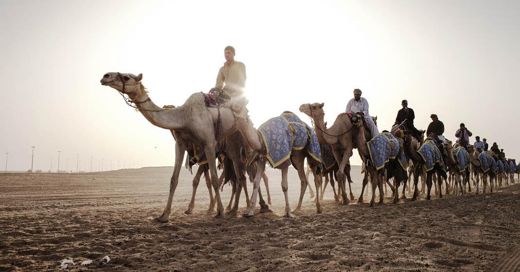 FL9245_Dubai_Luxus zwischen Wüste und Meer_4