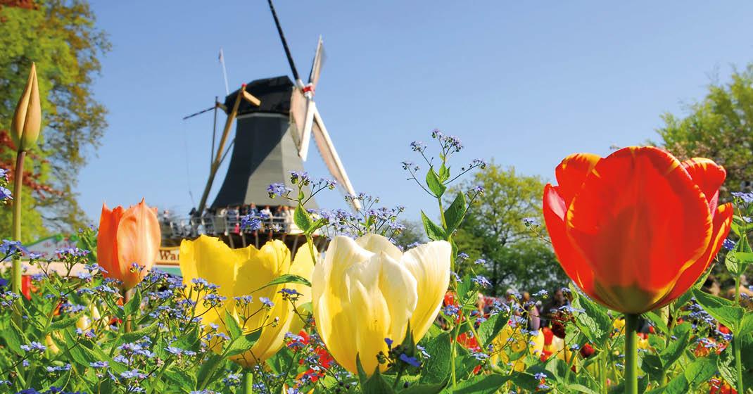KF9411_MS Aurelia, Deutschland, Holland, Belgien_62