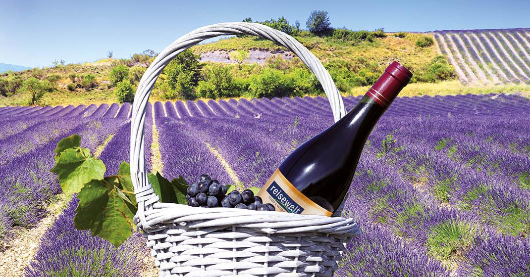 Frankreich_Provence und Camargue_2