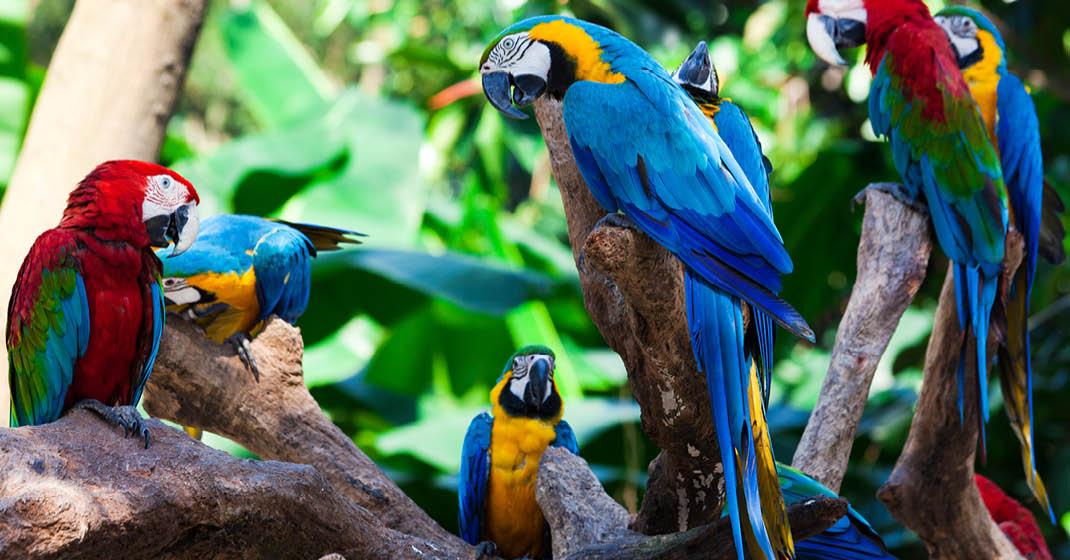 Costa-Rica_3