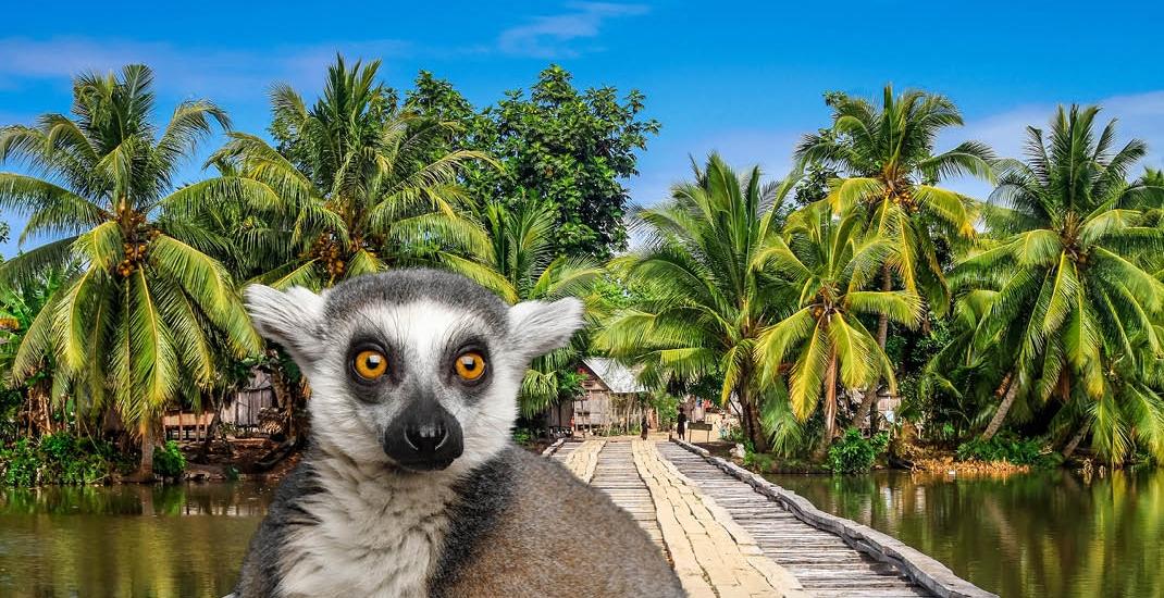 Madagaskar_