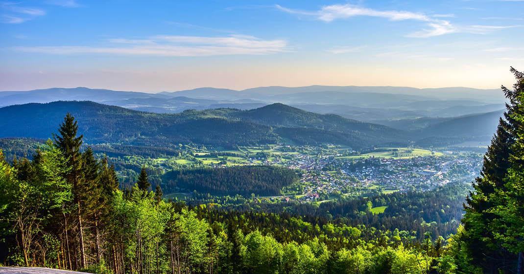 BU0543_Bayerischer Wald