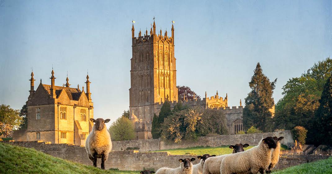BU0561_Wales_Schlösser und Schafe