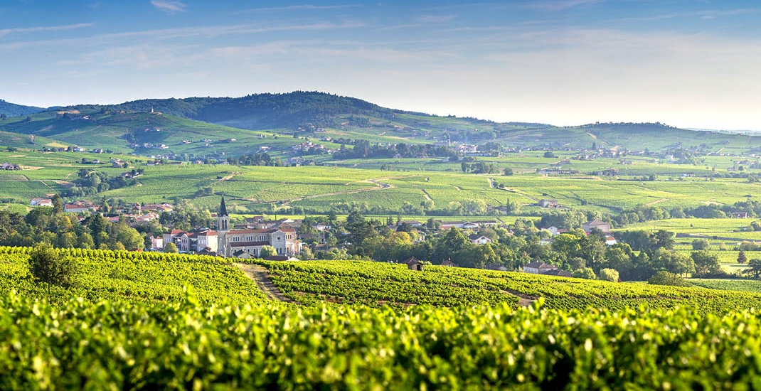 Frankreich_Burgund_