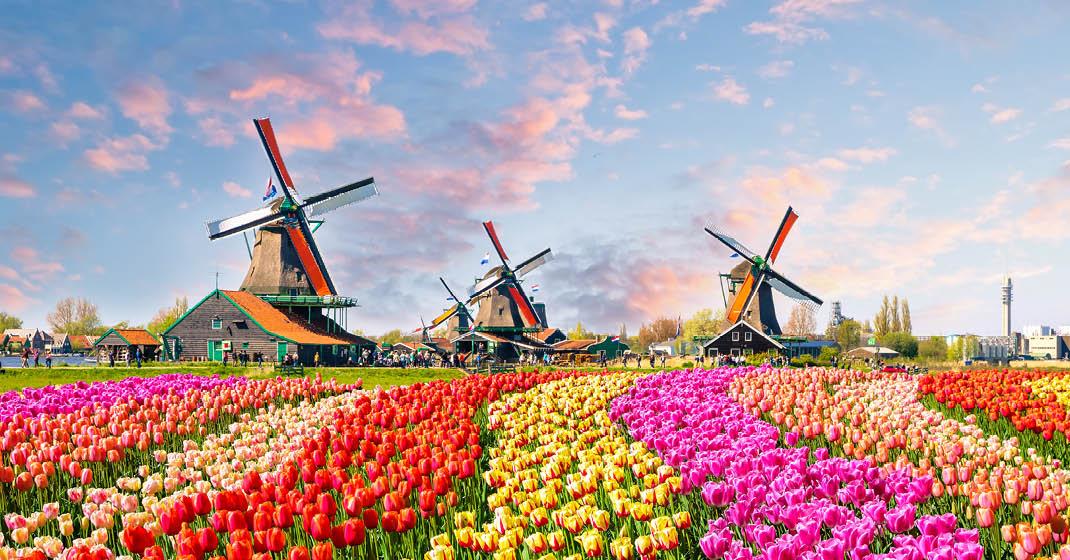 KF0071_MSAlina_typisch Holland