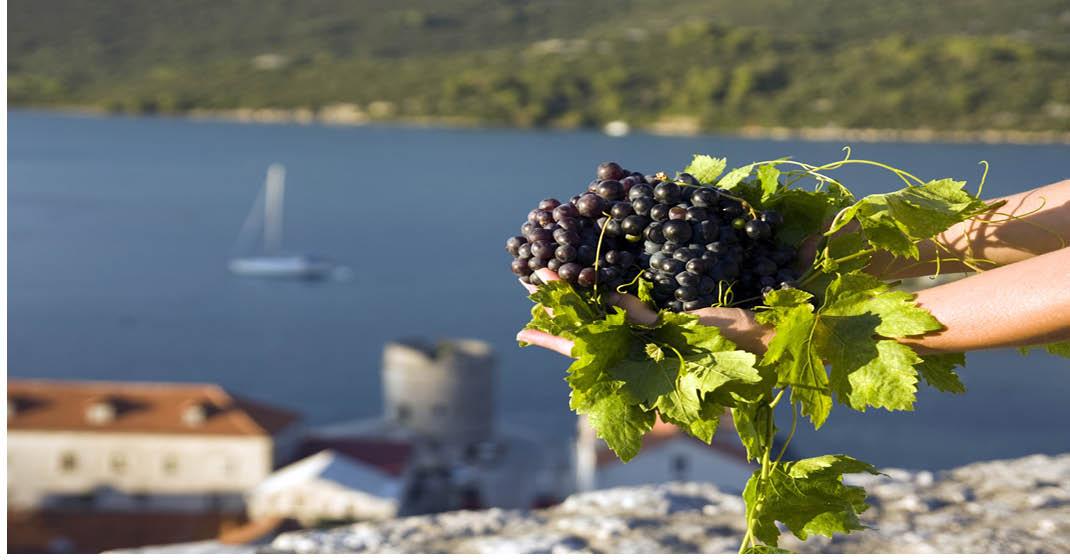 Kroatien_Herbstkracher0111