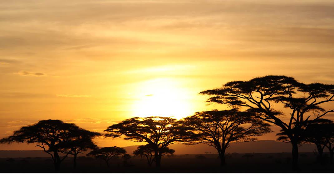 Tansania Reisegruppe November2020_014