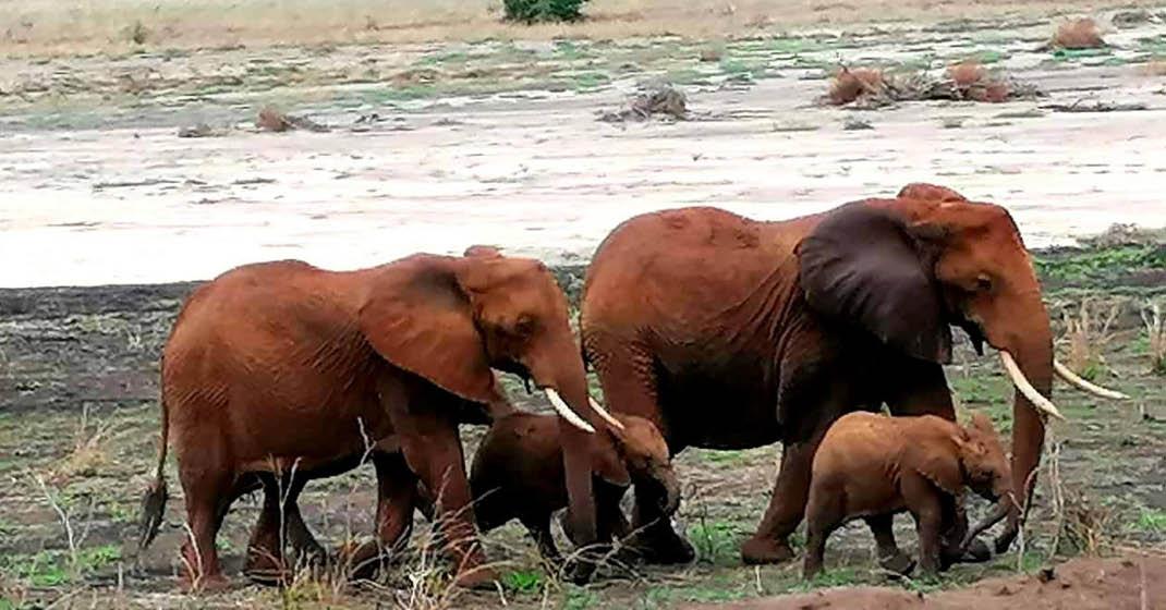 Tansania Reisegruppe November2020_13