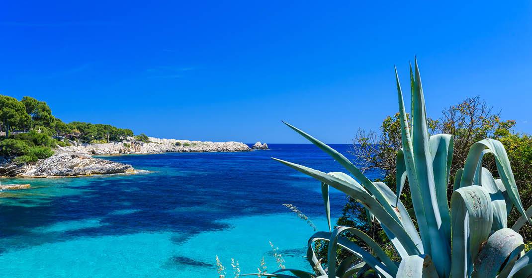 Mallorca The Sea By Gruptotel