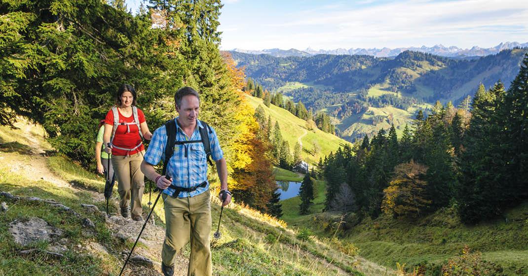 Schwarzwald4